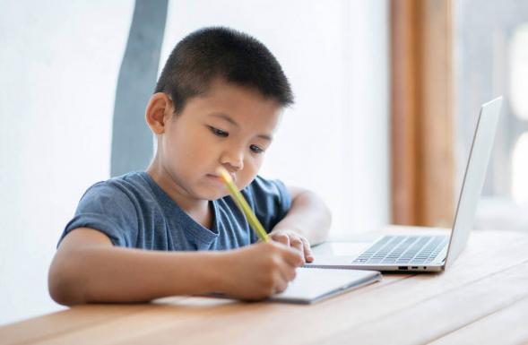 Boy Having Primary School Tuition