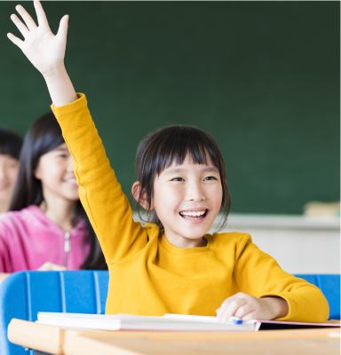 Categories of Primary School Tuition which MindFlex Offers