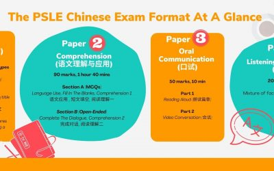 PSLE Chinese – A Complete Guide to Primary School & PSLE Chinese
