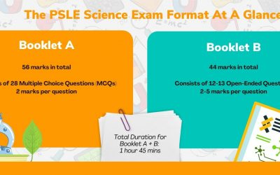 PSLE Science – The Complete Guide to PSLE Science in Singapore