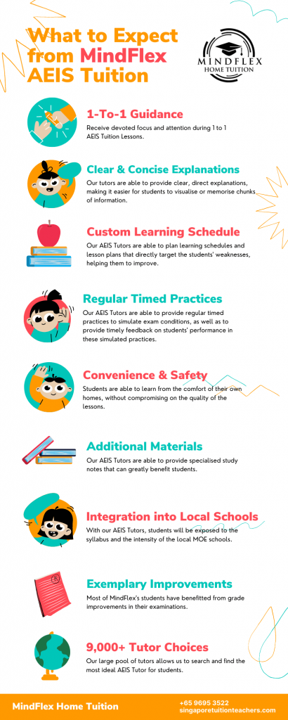 Infographic on What To Expect From MindFlex AEIS Tutors