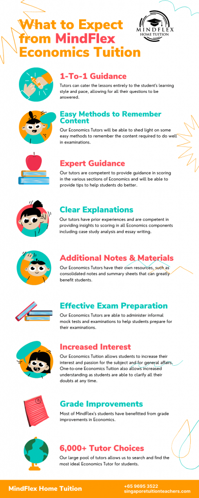 Infographic on What To Expect From MindFlex Economics Tutors