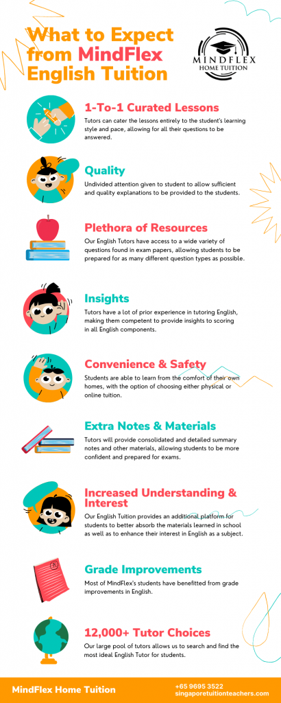 Infographic on What To Expect From MindFlex English Tutors