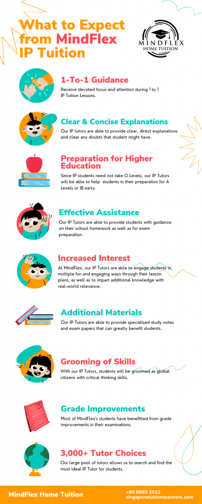 Infographic on What To Expect From MindFlex IP Tutors