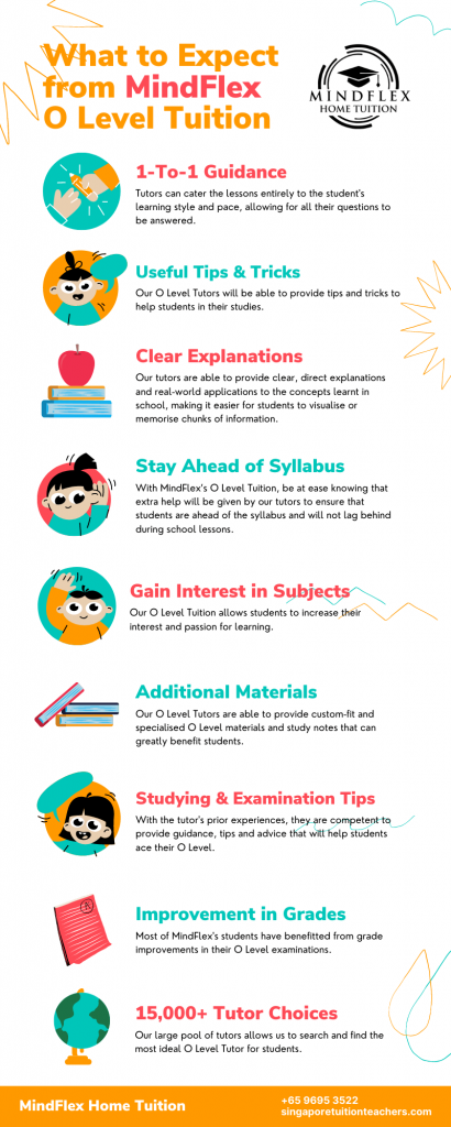 Infographic on What To Expect From MindFlex O Level Tutors
