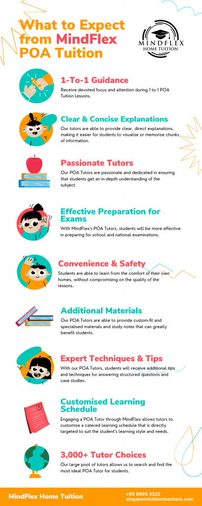 Infographic on What To Expect From MindFlex POA Tutors
