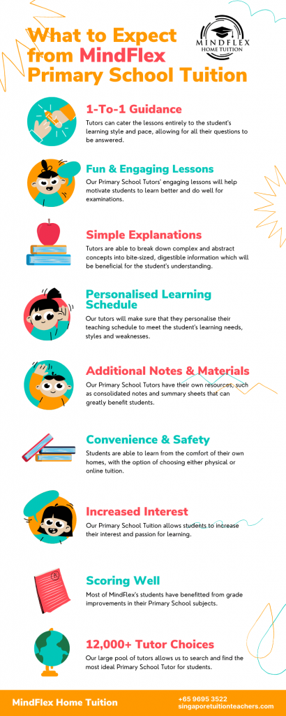 Infographic on What To Expect From MindFlex Primary School Tutors