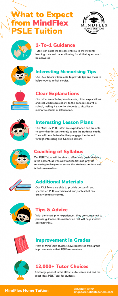 Infographic on What To Expect From MindFlex PSLE Tutors