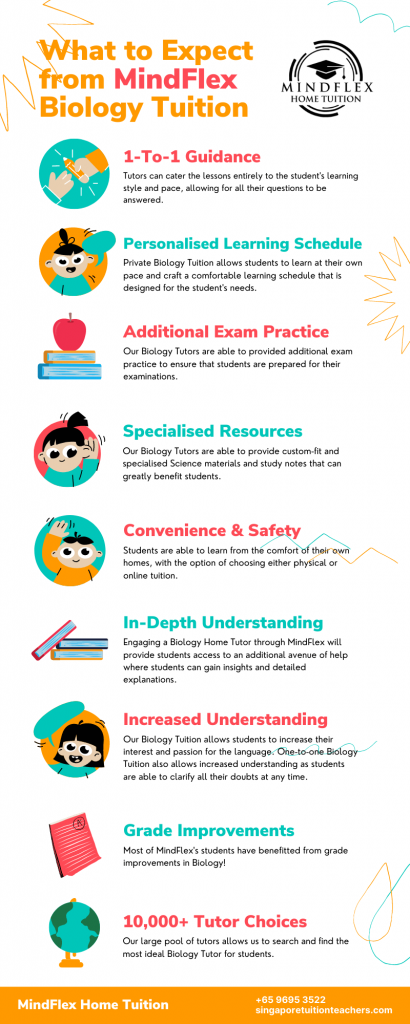 Infographic on What To Expect From MindFlex Biology Tutors